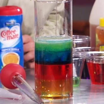 "FREE Video~ Learn how to make your own Seven Layer Density Column. Steve Spangler ""stacks"" liquids using a 9-oz. measuring cup, a tall, glass cylinder, and a turkey baster. Liquids include: light Karo syrup, water, vegetable oil, Dawn dish soap (blue), rubbing alcohol, lamp oil, honey, and food coloring. The preparation's a little cumbersome, but the ""WOW"" factor makes it all worthwhile! Limited budget? Watch the video together, and then let kids make their own concoctions at home!"